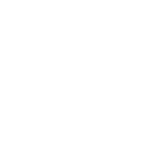 The Better Life Project.