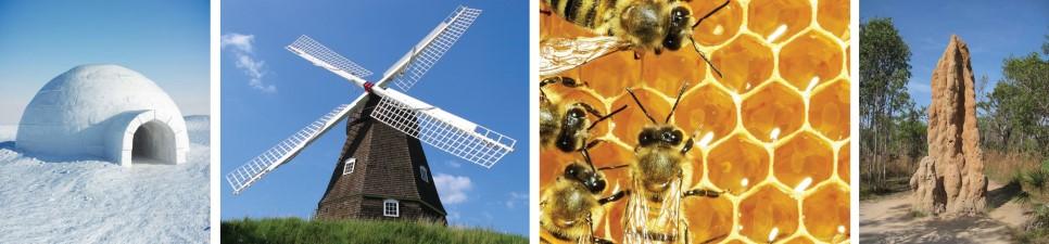 기후에 알맞는 건축물과 동물의 집