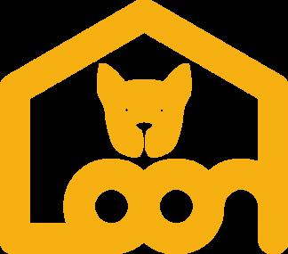 유기견보호센터 고양이무료분양 라온보호소 - 유기견보호소 유기묘 고양이입양 동물보호소