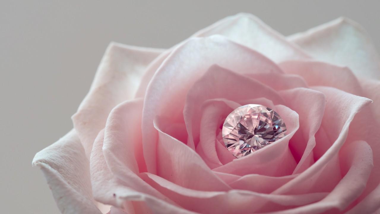 求婚與婚禮流程分享 (準備中)