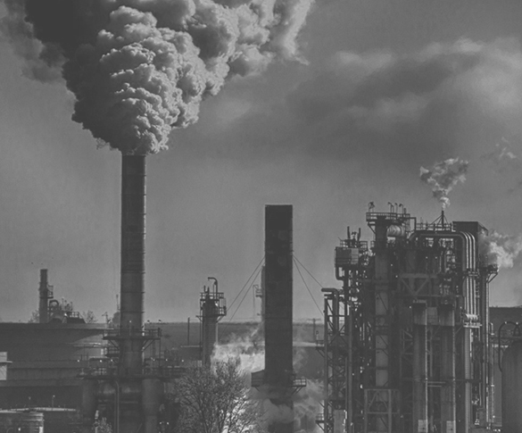 1.환경 오염물 차단