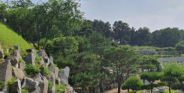 양수리 수목장