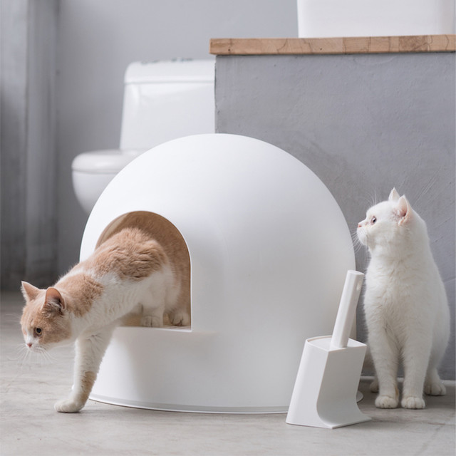 피단 이글루 화장실