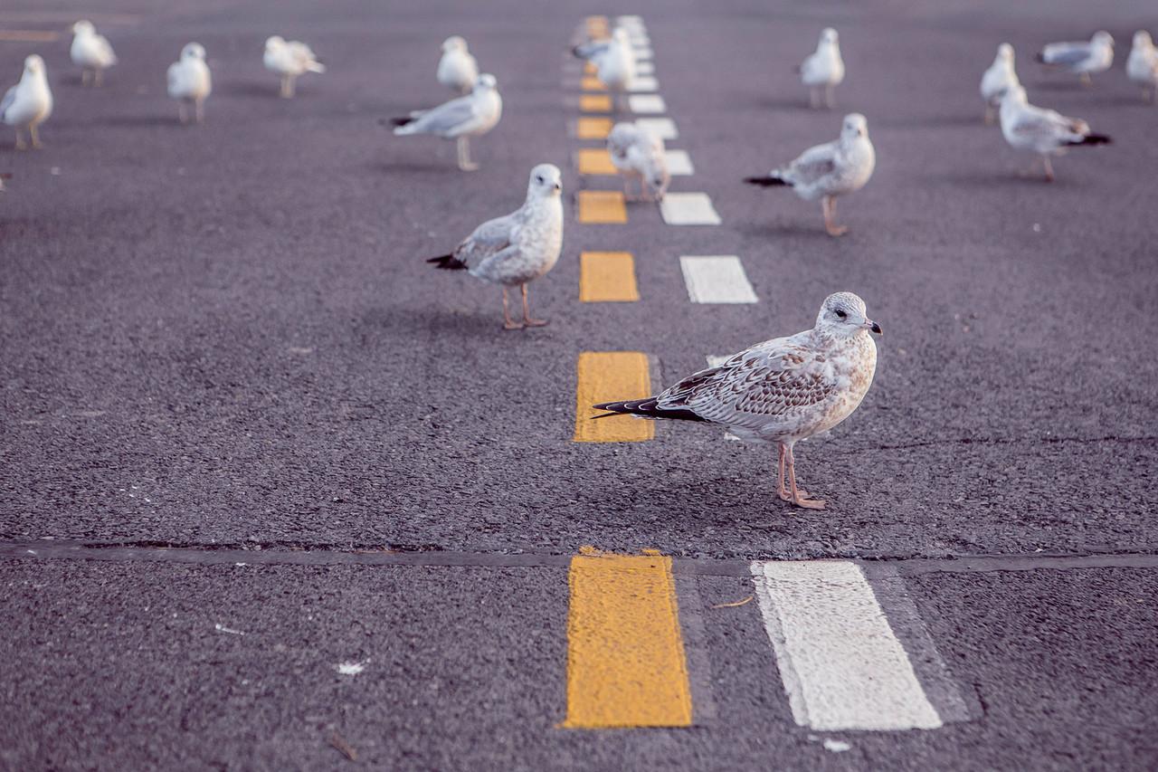 근본적인 변화는 리더에게서 시작되고 마무리된다. 스스로 변하지 않고 구성원의 변화를 부르짖는 리더에게 사람들은 희망을 걸지 않는다.