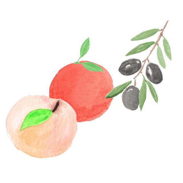 채소 / 과일