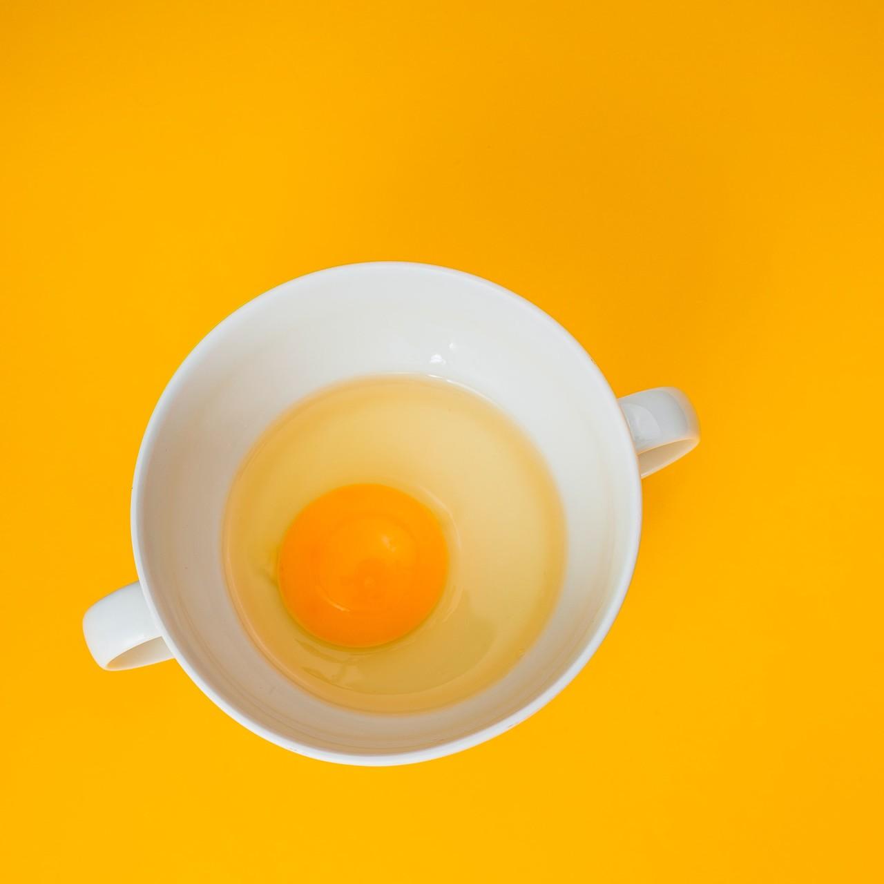 동초란은 항산화수와 값비싼 동충하초 생균제 사료를 먹고 자란 건강한 닭이 낳은 귀한 달걀입니다