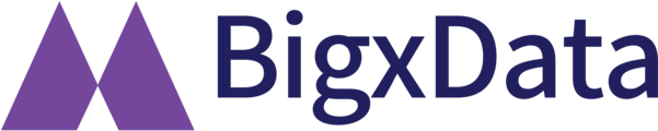 BigxData | 빅스데이터