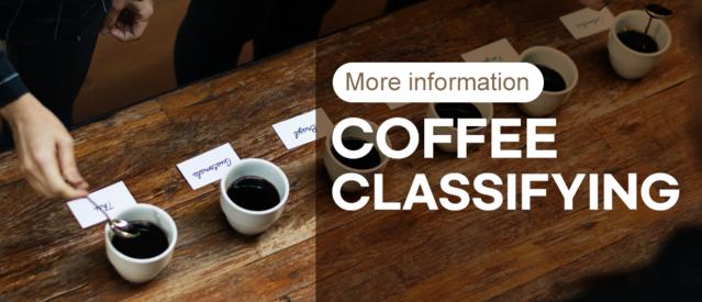 Coffee Classifying