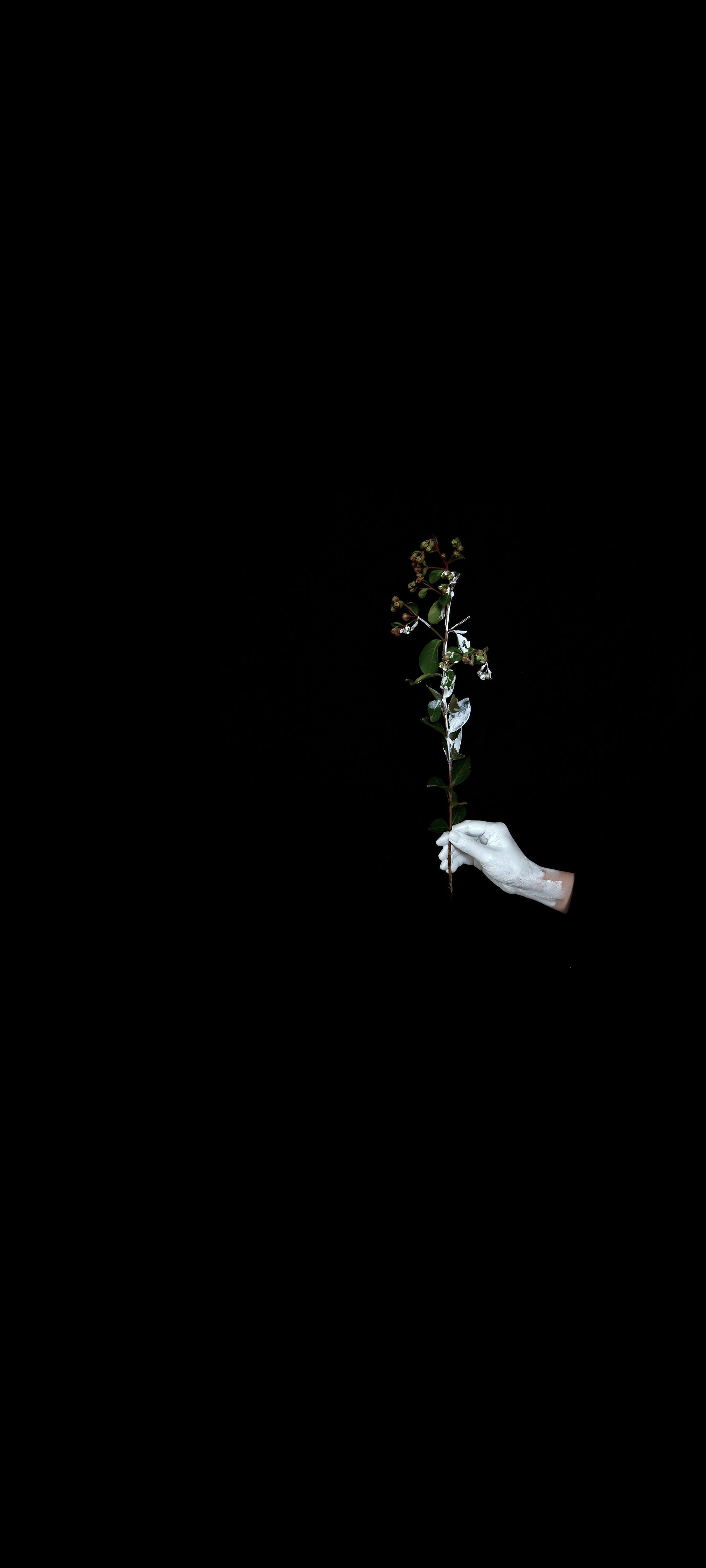 """Another White #3"" / 2020 / 180x400cm / print on film, light"