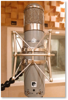 Chandler Limited Redd Microphone