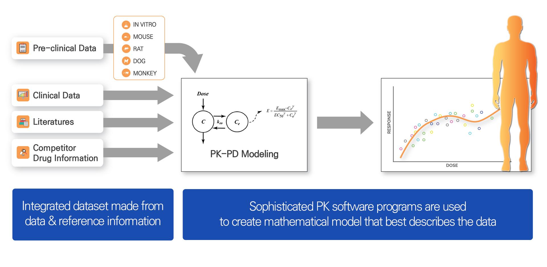 그림1. General Workflow of Modeling & Simulation