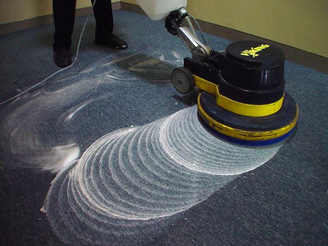 카펫 관리