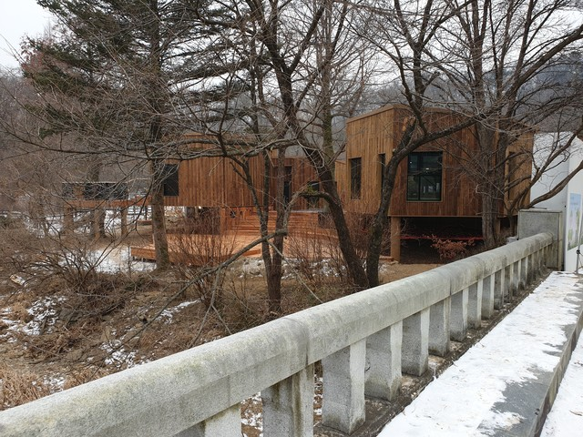 National Arboretum Forest School