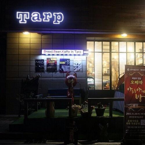 춘천 TARP