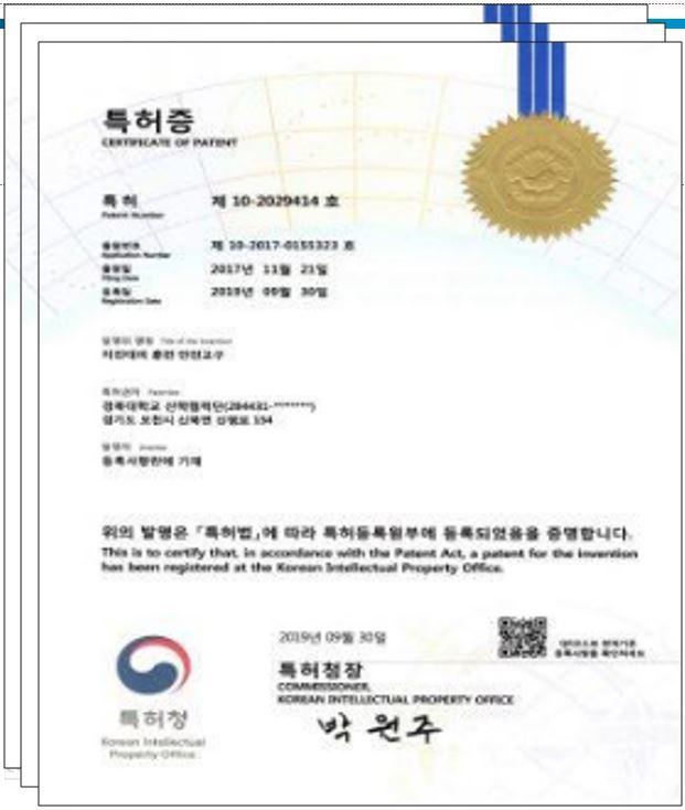 특허증(6개)
