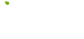 J young cosmetic