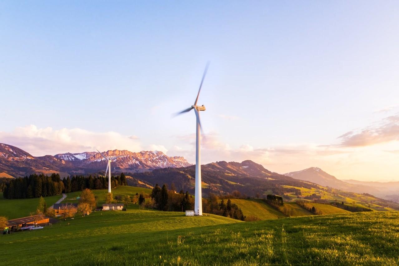 #Eco   #Sustainability