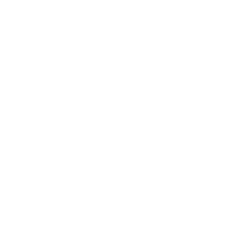 <p><strong>발전</strong></p>