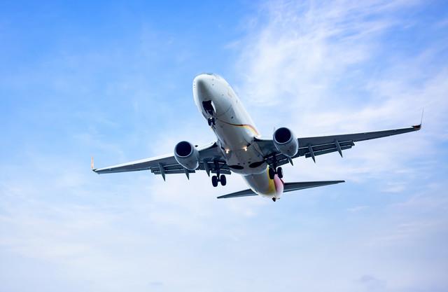 빠른 항공 운송