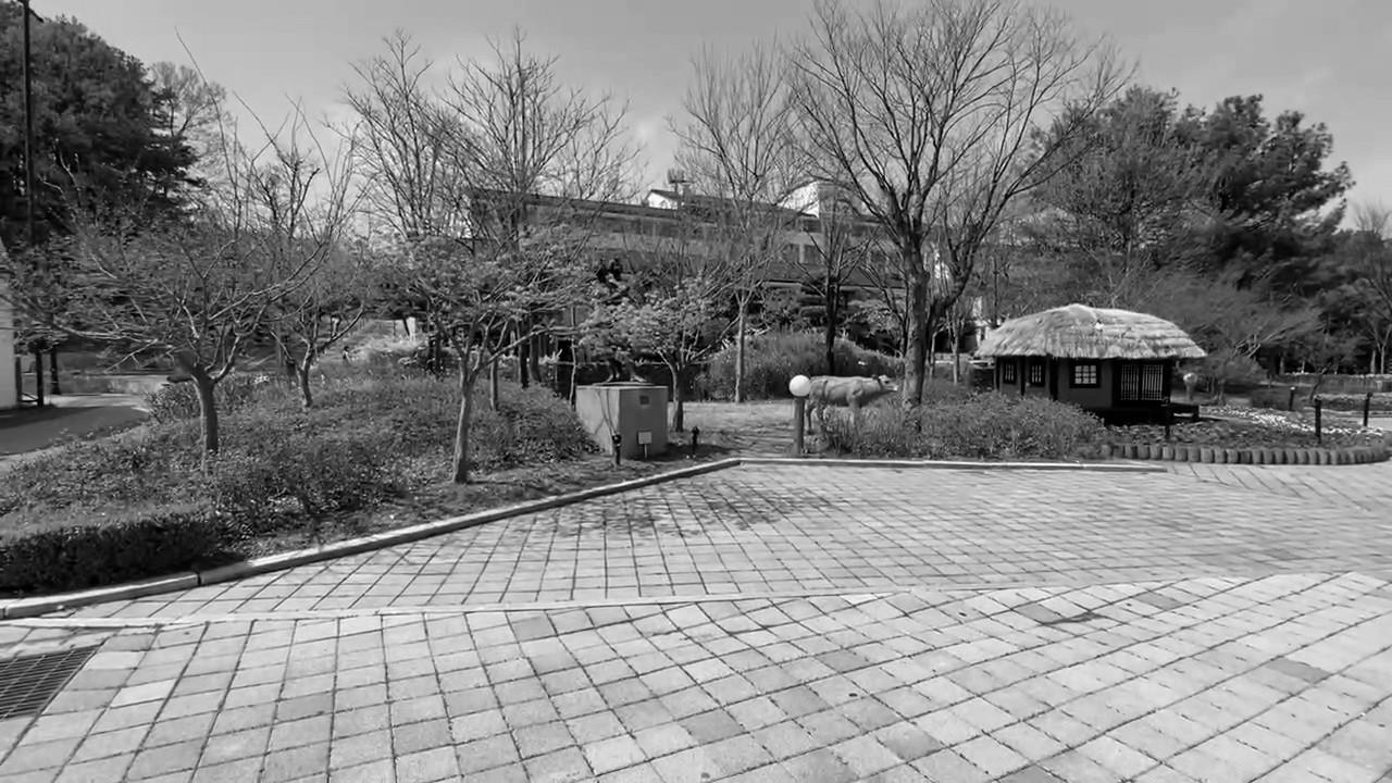 상록리조트 광장1