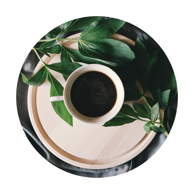 유기농 '타타마' 커피