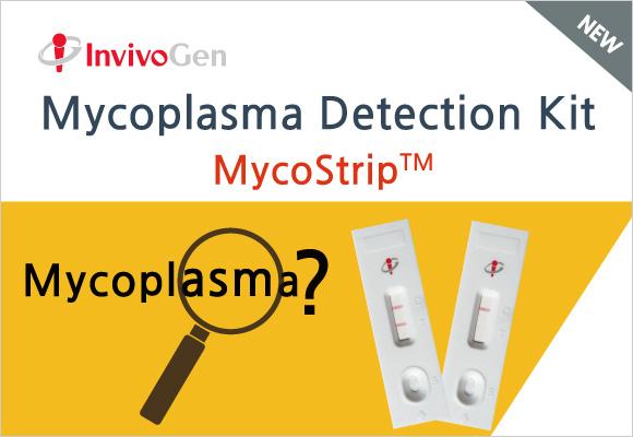 1시간 안에 Mycoplasma 오염 확인가능!!