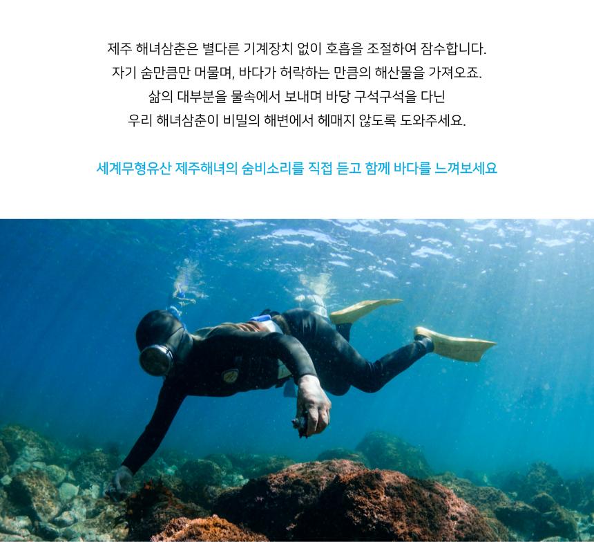 운이 좋다면 해녀삼춘들과 함께 바다 속 세상을 느껴볼 수 있습니다.