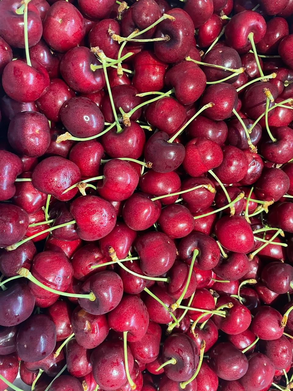 <br><h4>Dark Sweet Cherry</h4>