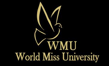 WMU INFLUENCER CURATION MALL