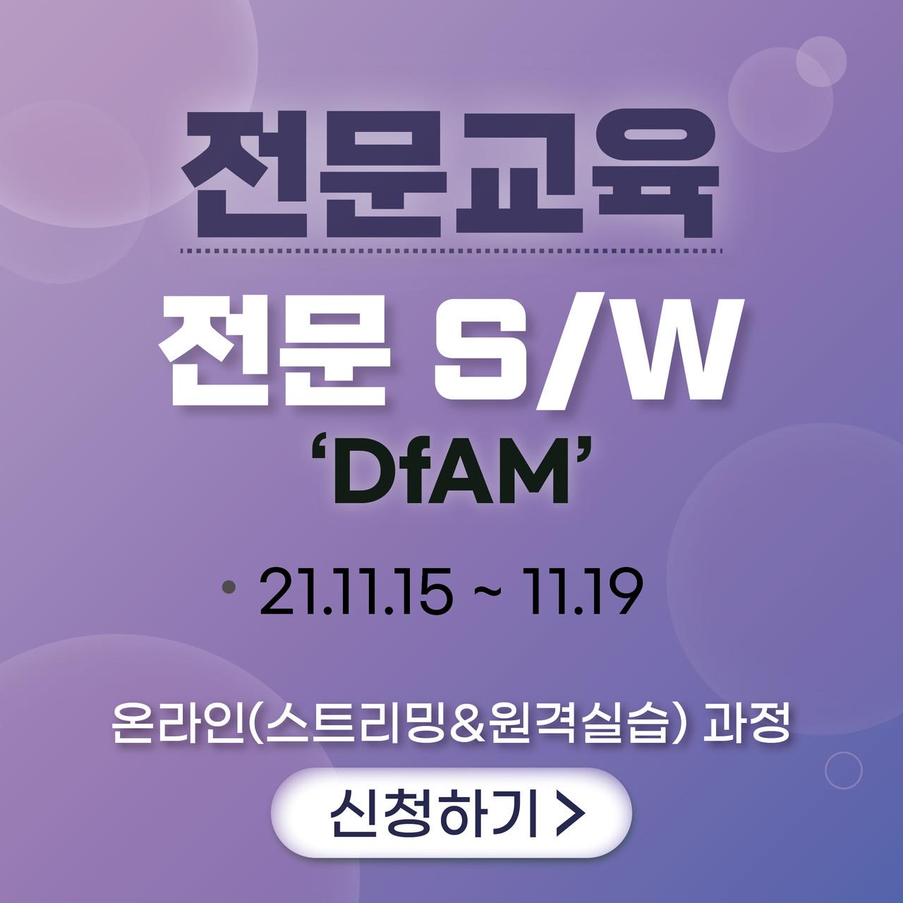 전문-전문  S/W (DfAM)