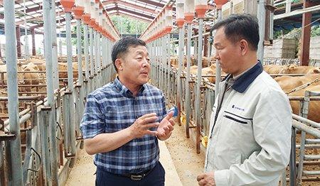 안동시 태평양농장 이준대 대표(왼쪽)가 한기남 박사와 바이탈금송아지 사료의 질 향상에 대하여 논의하고 있다.