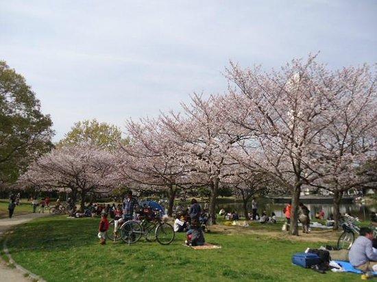 오사카 사카이 공원