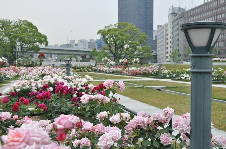 나카노시마공원