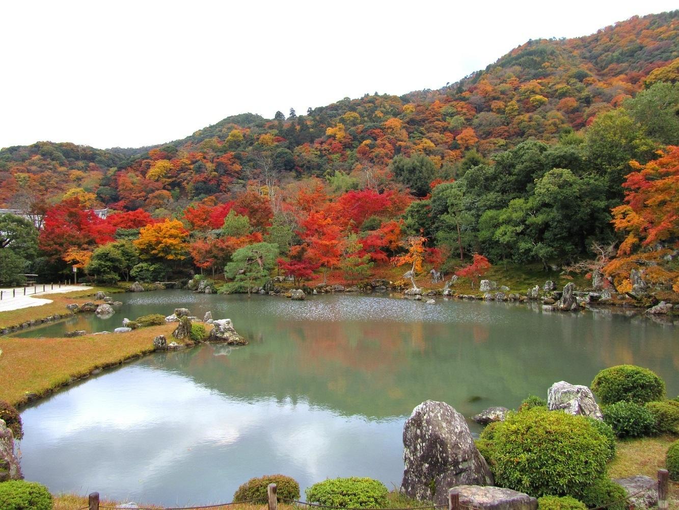 교토 텐류지 지센카이유 정원 호수