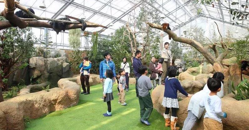 동물원 체험