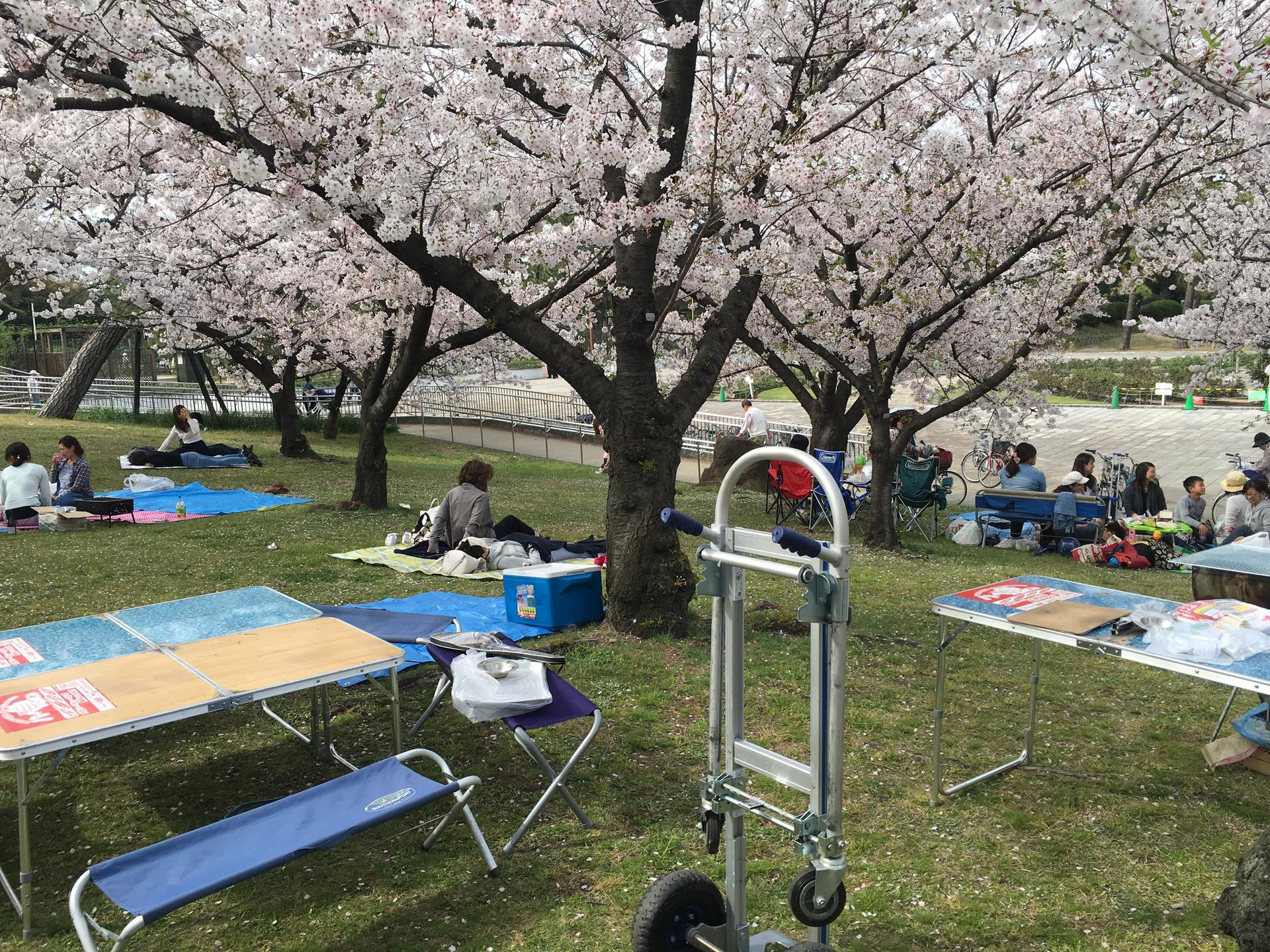 일본 바베큐파티