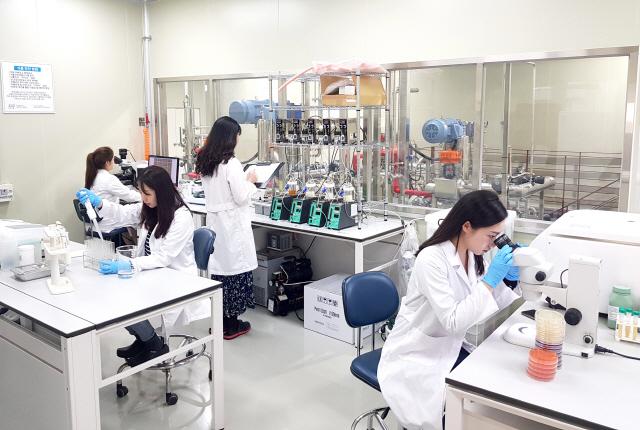 ▲ 한국베름 연구소에서 연구원들이 포스트바이오틱스 연구를 하고 있다.