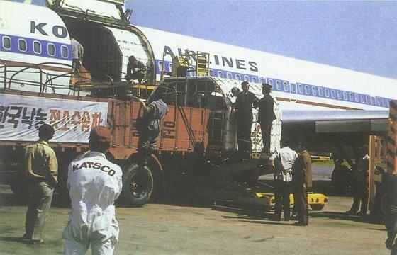 1973년부터 미국과 캐나다산 젖소는 화물을 싣고 갔다가 빈 채 돌아오는 대한항공을 이용해 들여왔다. [사진 매일유업]