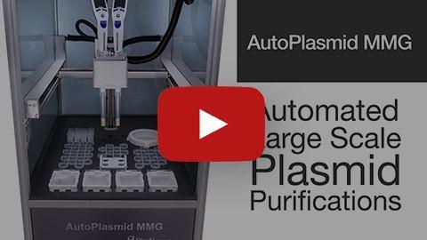 AutoPlasmid_MMG_demo_video