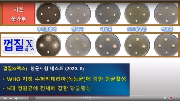 기존 꽃가루와 껍질벗긴 꽃가루 (껍질X기술)의 항균력 차이[사진= 비센 바이오 제공]