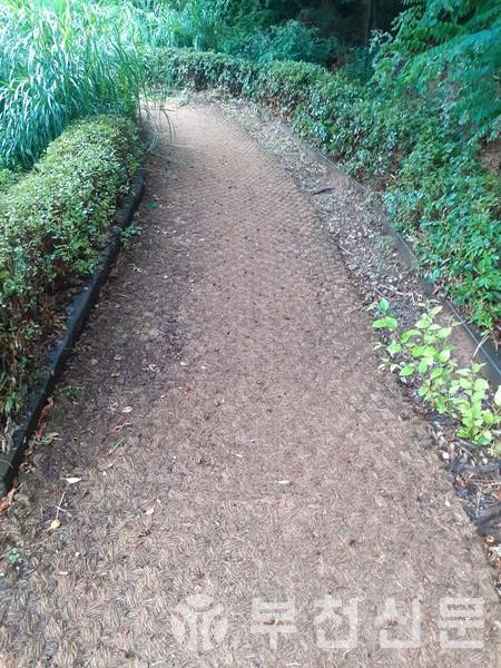 도당근린공원 산책로에 야자매트가 깔려있다.