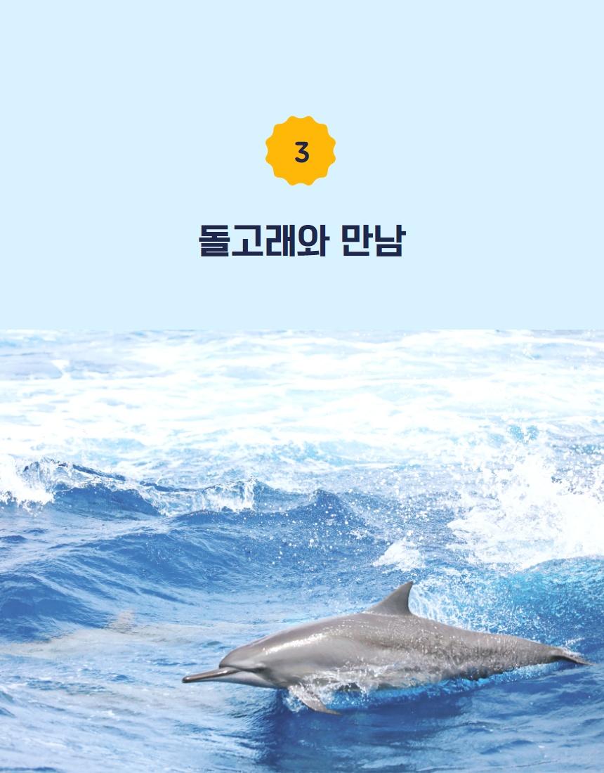 돌고래와 만남