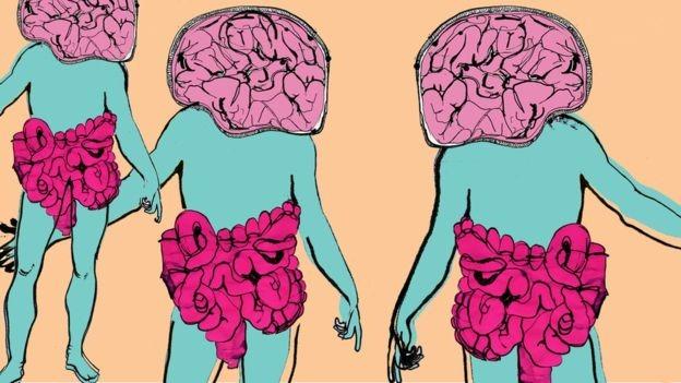 항우울제를 먹는 환자 10명 중 2명 정도만 상태가 나아진다. 실험 결과 장내 미생물의 전체적인 비율이 특히 중요한 것으로 나타났다.