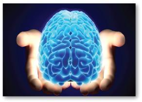몸 속의 모든 세포들은 전달되는 모든 음향 진동에 대하여 곧바로 반응