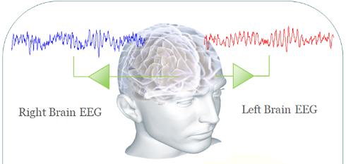 뇌신경세포가 활동하게 되면 전기적 신호를 방출합니다. 이를 두피에 단자