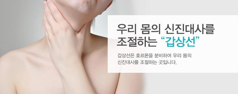 """우리 몸의 신진대사를 조절하는 """"갑상선"""""""