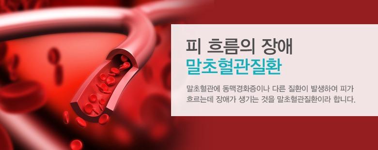 피 흐름의 장애 말초혈관질환