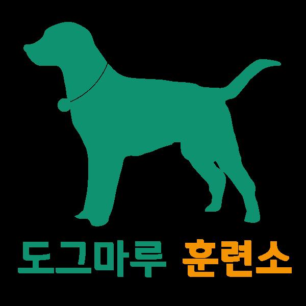 강아지행동교정 도그마루 홈스쿨