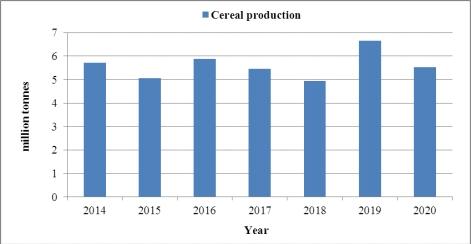자발적인 국가보고서(VNR)에서 제시된 연례 곡물생산량
