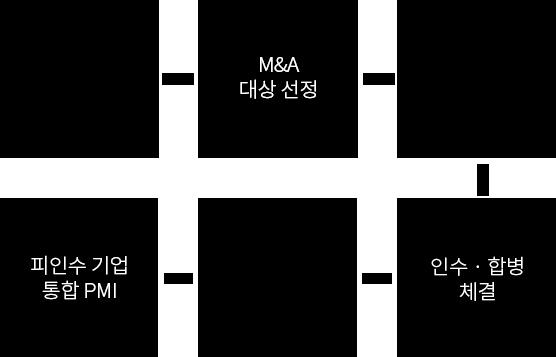 M&A 전략수집 · M&A 대상 선정 · 인수 전 실사 · 인수 및 합병 체결 · 인수 후 실사 · 피인수 기업 통합 PMI